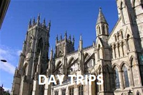 Day Trips July - September 2021